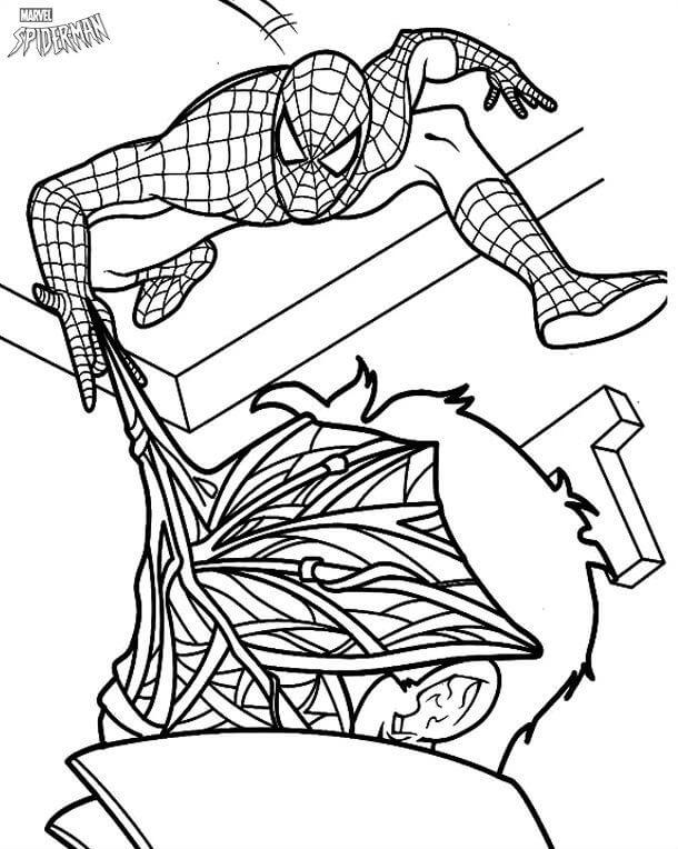 Раскраски Человек паук распечатать или скачать бесплатно в ...