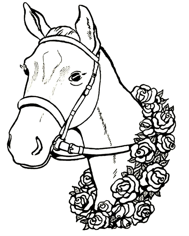 Раскраски Лошадь распечатать или скачать бесплатно в ...