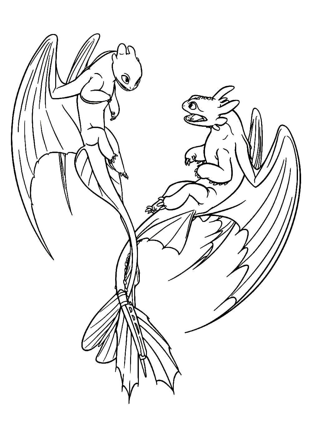 Раскраски Как приручить дракона распечатать или скачать ...