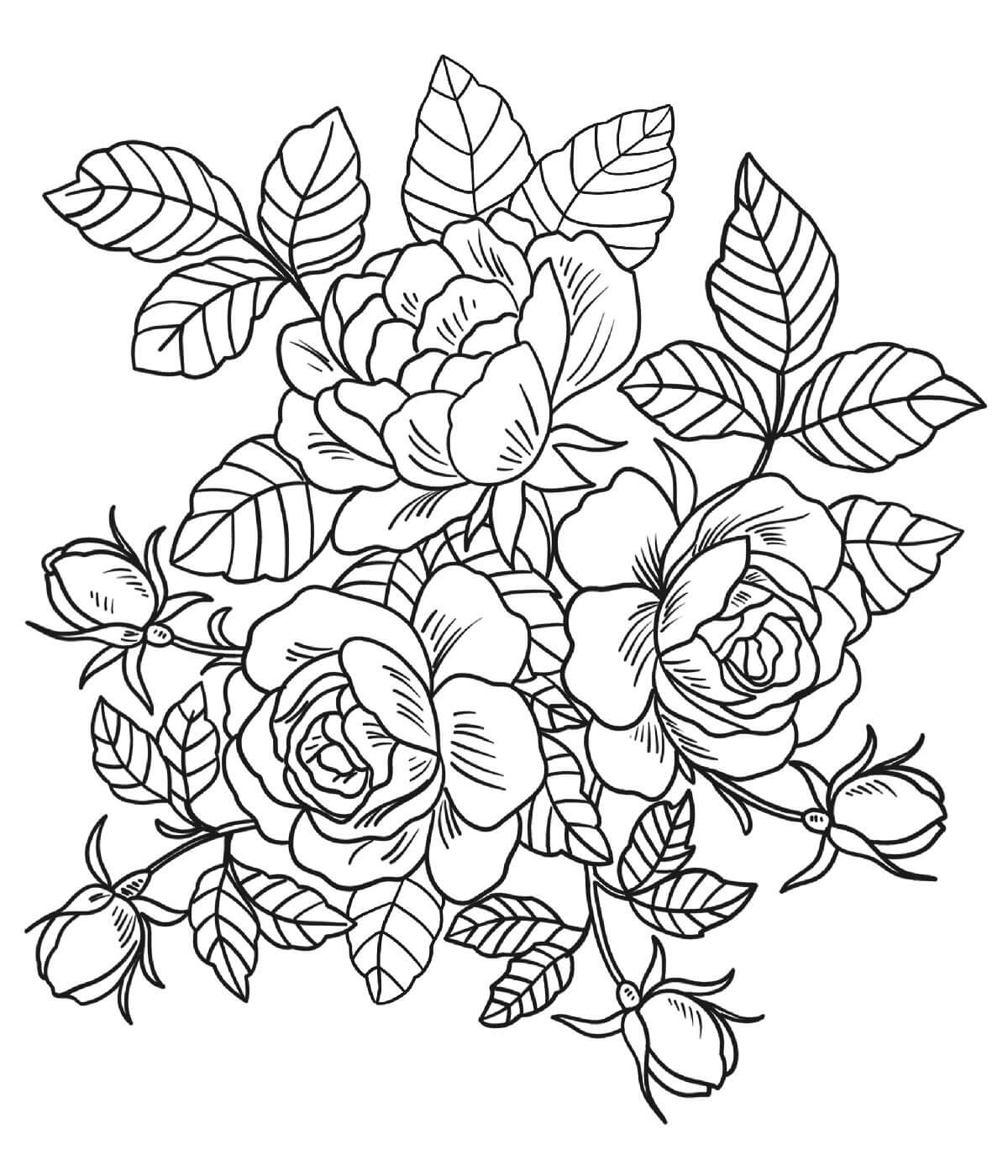Раскраски с розами, горой черепов вороном