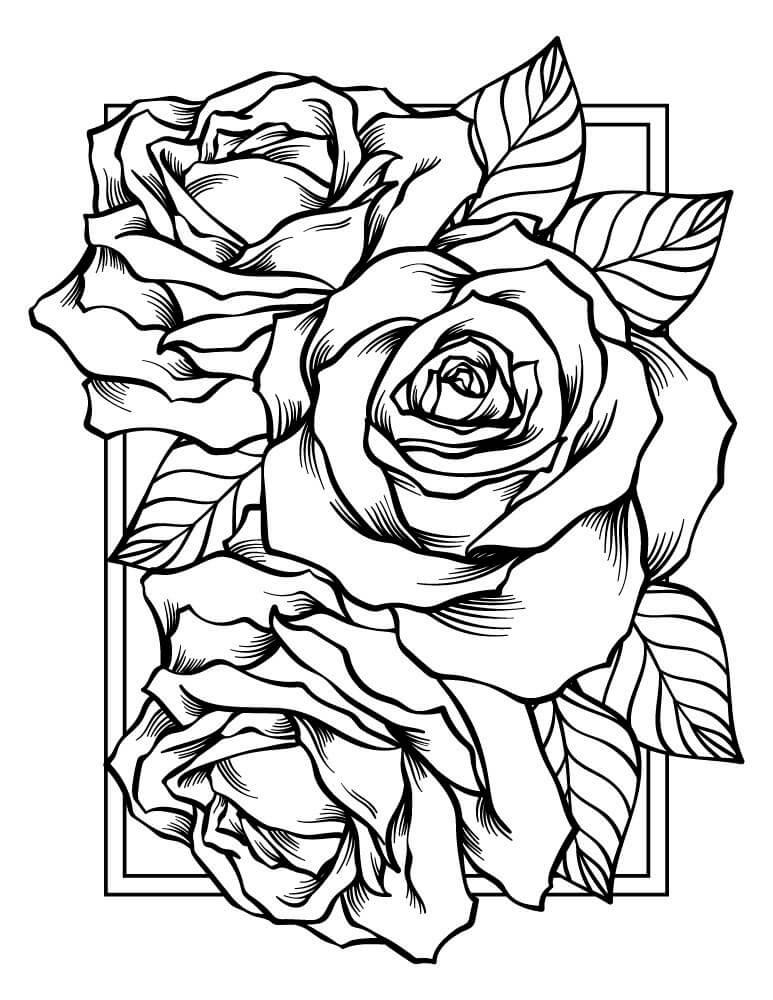 Розы печать картинок